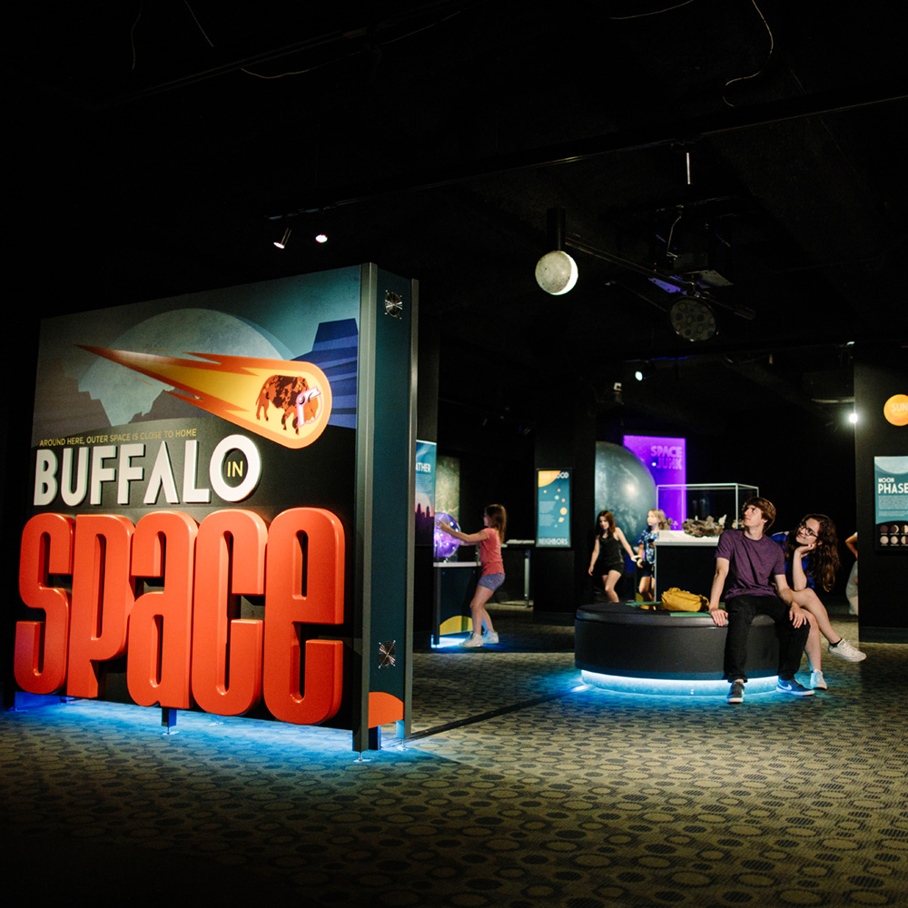 buffalo space feauted - Buffalo In Space