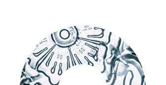 science circle 4 - Plan a Visit