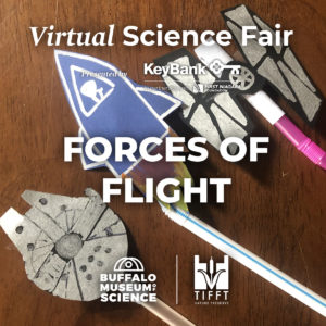 forces of flight 300x300 - Virtual Science Fair